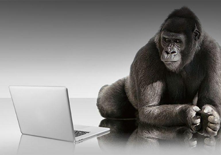 Gorilla Glass 6 i już możesz rzucać telefonem ;)