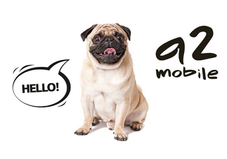 Premium Mobile przejmuje klientów a2mobile