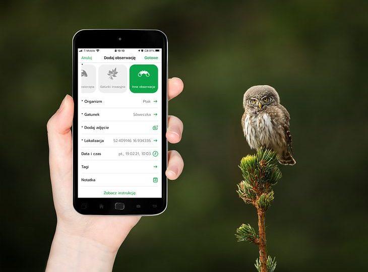 Zabierz smartfon do lasu i zbaw się w naukowca